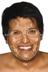 Face Map Male